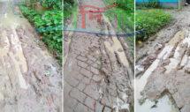 কুলাউড়ার দানাপুর-জয়পাশা সংযোগ সড়কের বেহাল দশা