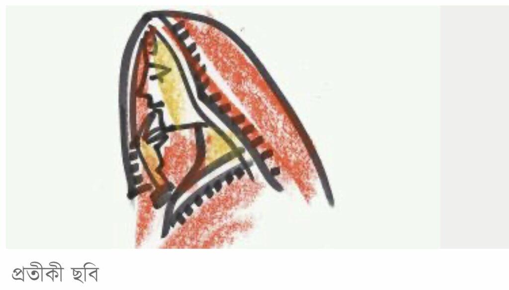 বিয়ে হয়েছে ঠিকই তবে কনে ছাড়াই ফিরতে হলো বরপক্ষকে